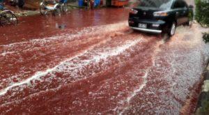 160915093254-bangladesh-blood-rivers-1-exlarge-169