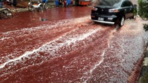 160915093254-bangladesh-blood-rivers-1-exlarge-169
